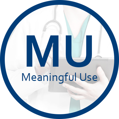 Meaningful Use Services